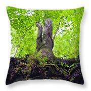 Tunnel Tree Throw Pillow