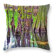 Tupelo/cypress Swamp Reflection At Mile 122 Of Natchez Trace Parkway-mississippi Throw Pillow