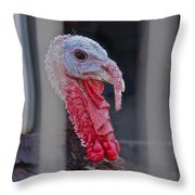 Turkey 1 Throw Pillow