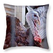 Turkey 2 Throw Pillow