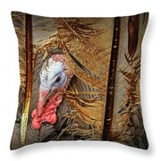 Turkey And Feathers Throw Pillow