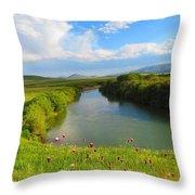 Turkey Countryside Throw Pillow