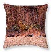 8964 - Turkey - Eastern Wild Turkey Throw Pillow