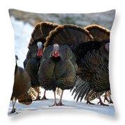 Turkey Fans Throw Pillow
