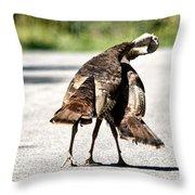 Turkey Fight Throw Pillow