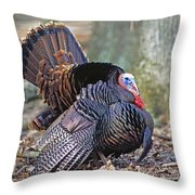 Turkey Gobbler Strut Throw Pillow