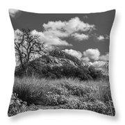 Turkey Hill Bw Throw Pillow