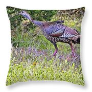 Turkey In The Draw Throw Pillow