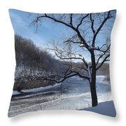 Turkey River Throw Pillow