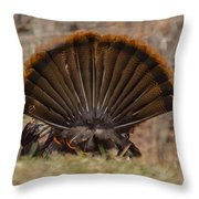 Turkey Tail Throw Pillow