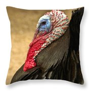 Turkey Time Throw Pillow by Carolyn Marshall