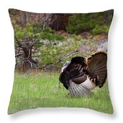 Turkey Trot Throw Pillow