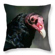 Turkey Vulture Cathartes Aura South Throw Pillow