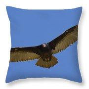 Turkey Vulture Soaring Overhead Throw Pillow