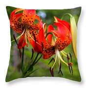Turkish Cap Lily  Throw Pillow