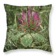 Turkish Rose Clover Throw Pillow