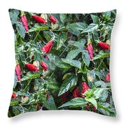 Turks Cap And Rain Drops Throw Pillow