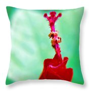 Turks Cap With Visitors Throw Pillow