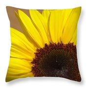 Turmeric Aster Throw Pillow