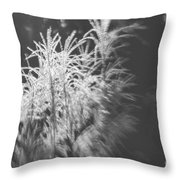 Turn On The Light Throw Pillow