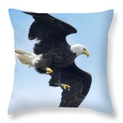 Turnabout Throw Pillow