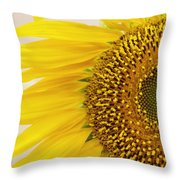 Turned On The Brights Throw Pillow