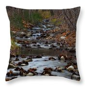 Turner Falls Stream Throw Pillow