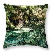Turquoise Forest Pond On A Summer Day No1 Throw Pillow
