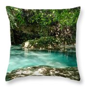 Turquoise Forest Pond On A Summer Day No3 Throw Pillow