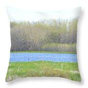 Turquoise Marsh Throw Pillow