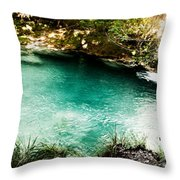 Turquoise River Waterfall And Pond Throw Pillow