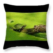 Turtle-190 Throw Pillow