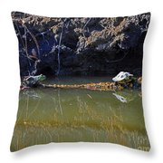 Turtle And Frog On A Log Throw Pillow