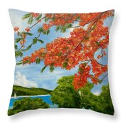 Turtle Bay Virgen Islands Throw Pillow