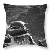 Turtle Bw Throw Pillow by Nelson Watkins