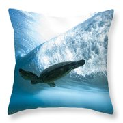 Turtle Clouds Throw Pillow