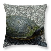 Turtle Crossing Throw Pillow