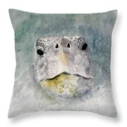 Turtle Face Throw Pillow