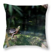 Turtle Grotto Throw Pillow