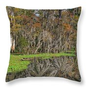 Turtle Haven Throw Pillow