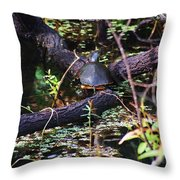 Turtle In The Glades Throw Pillow