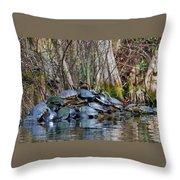 Turtle Landing Throw Pillow