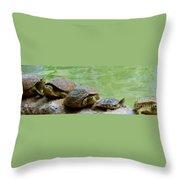 Turtle Ninjas Throw Pillow