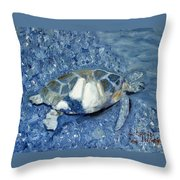 Turtle On Black Sand Beach Throw Pillow