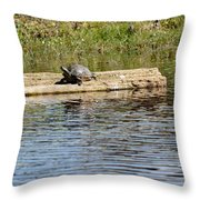 Turtle Raft Throw Pillow