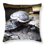 Turtle Rant Throw Pillow