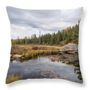 Turtle Rock Cloudy Day Throw Pillow