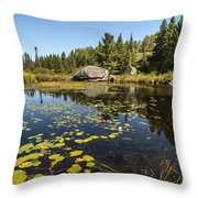 Turtle Rock Sunny Day Throw Pillow