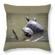 Turtle Trio Throw Pillow
