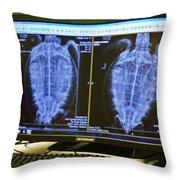 Turtle X-ray Throw Pillow